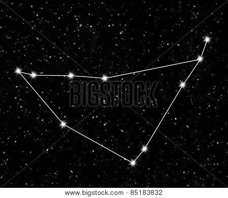 constellation Capricornus against the starry sky