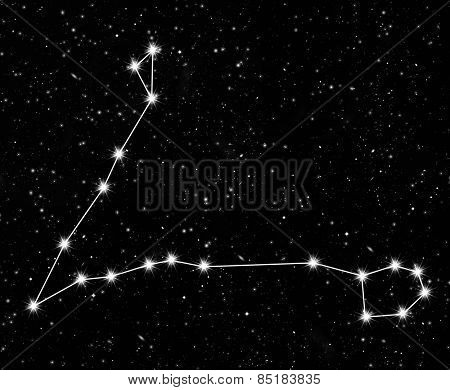 constellation Pisces against the starry sky