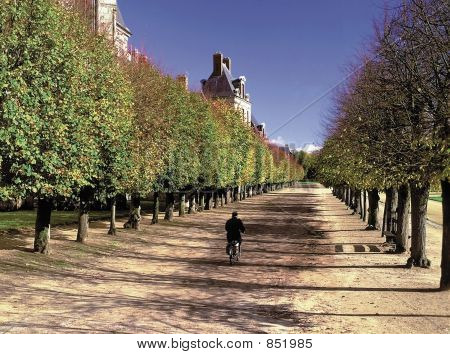 france. ile-de-france. palace of fontainebleu.