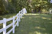 image of pastures  - White country style fence bordering a pasture in rural Michigan - JPG