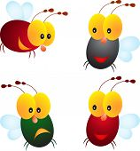 stock photo of insect  - isolated insect fly vectors - JPG
