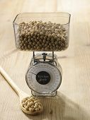 image of soy bean  - weighing the amount of soy beans - JPG
