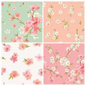 Set of Spring Blossom Flowers Background - Seamless Floral Shabby Chic Patterns - in vector poster