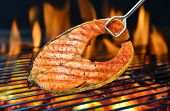 picture of flame-grilled  - Grilled salmon on the flaming grill - JPG