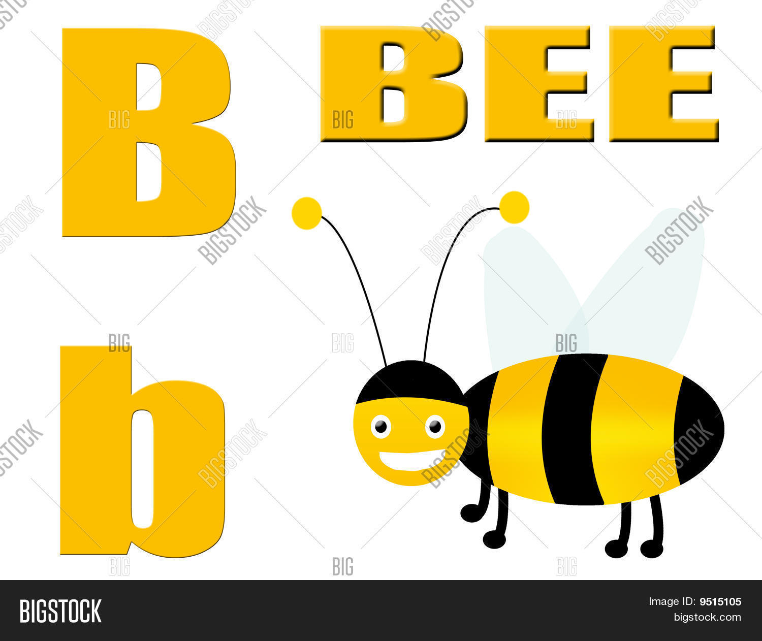 b for bee on white background