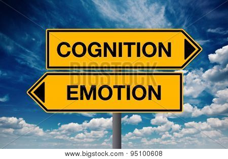 Cognition Versus Emotion, Concept Of Choice
