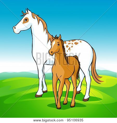 Horses On Meadow - Mare And Foal, Vector Illustration