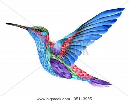 Hummingbird tattoo, watercolor painting. Isolated on white