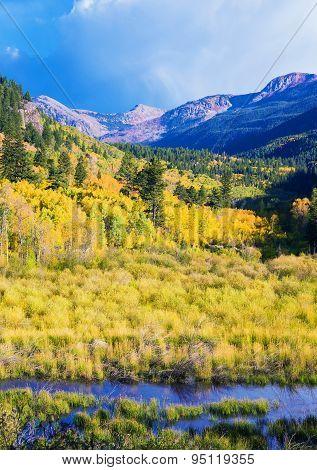 Aspen Colorado Landscape