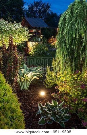 Illuminated Garden At Night