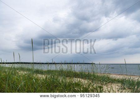 Wild Beach With Grass Under Stormy Sky
