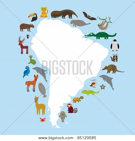 South America Sloth Anteater Toucan Lama Bat Seal Armadillo Boa Manatee Monkey Dolphin Maned Wolf Ra