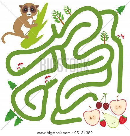 Lemur On The Branch And The Apple Pear Strawberry Cherry On White Background  Labyrinth Game For Pre