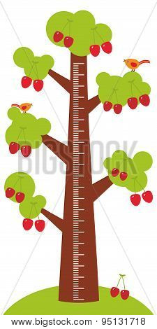 Big Tree With Green Leaves And Ripe Red Cherry On White Background Children Height Meter Wall Sticke