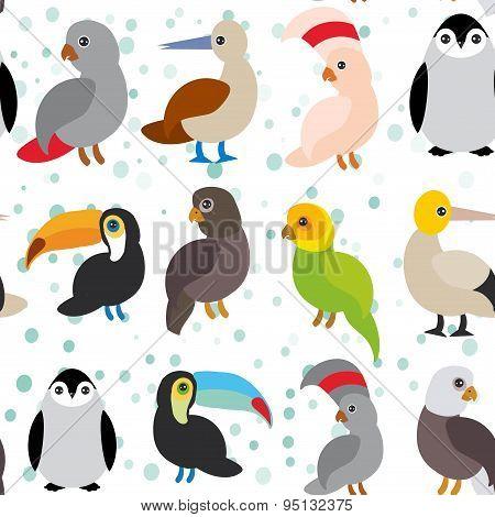 Seamless Pattern Cute Cartoon Birds Set - Gannet Penguin Toucan Parrot Eagle Booby  On White Backgro