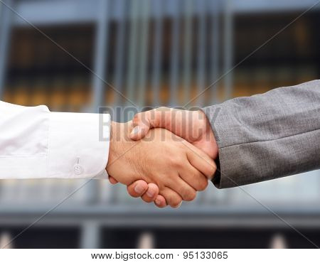 Handshake Gesture of two Professionals