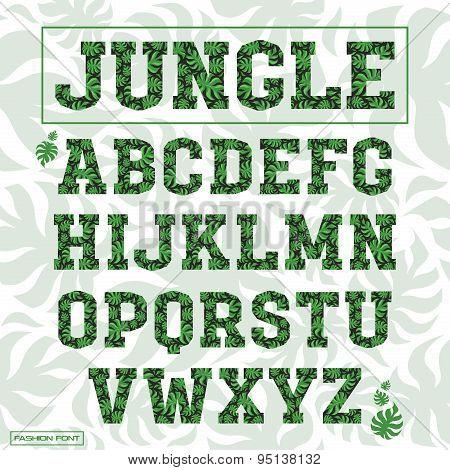 Serif Decorative Font