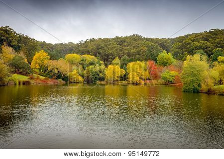 Autumn Landscape. Panorama Of Autumn Trees Around The Pond