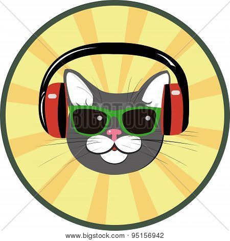 funny cat with headphones and spectacled