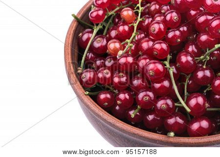 Redcurrants In A Bowl