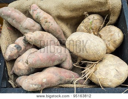 Yams and yam bean on jute cloth background.