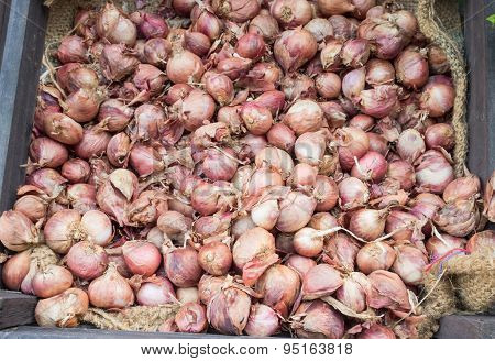 Shallot on jute cloth background for sale in market.