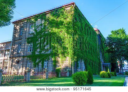 Grodno State University