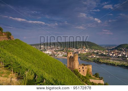Castle Ehrenfels Above The Rhine Valley