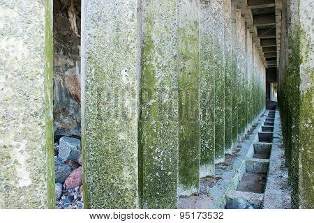 Corridor Of Green Concrete Pillars