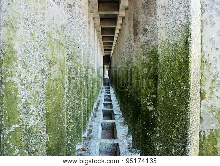 Corridor Of Old Colored Concrete Pillars