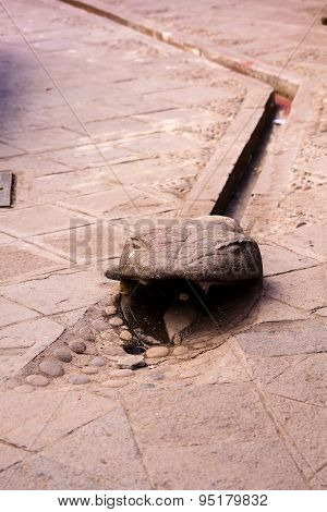Snake Head Carving Gutter In Walkway Cusco Peru