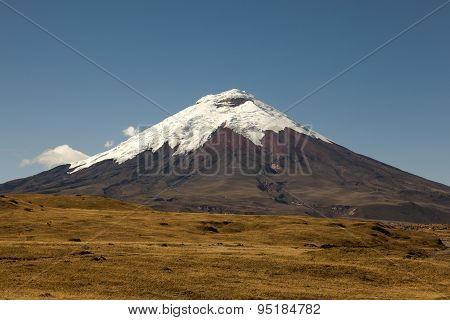 Cotopaxi Volcano And Moor