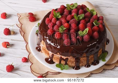 Sponge Cake With Chocolate And Fresh Raspberries, Horizontal