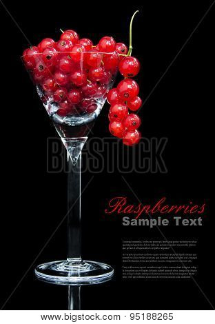 Red currants in cocktail glass