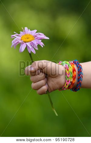 Flower In Young Girl's Hand With Rubber Band Bracelets