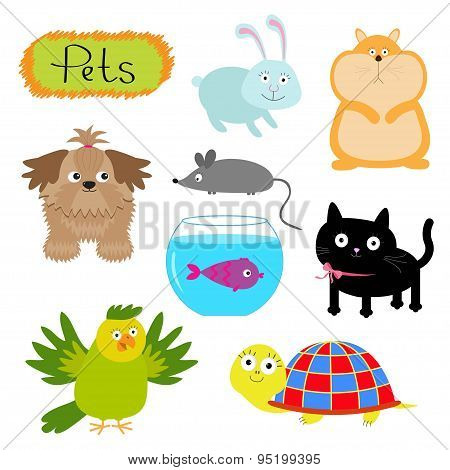 Vector Pets Illustration Isolated Cute Set White Background Cat, Dog, Fish, Hamster, Parrot, Turtle,