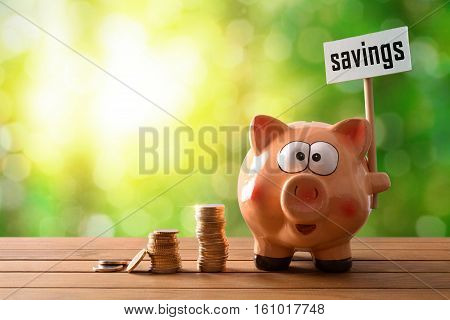 Piggy Bank With Savings Billboard On Table And Nature Background