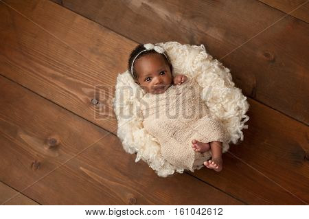 An alert one month old newborn baby girl wearing a cream colored bow headband. She is swaddled with a beige stretch wrap and is looking directly into the camera. Shot in the studio on a wood background.