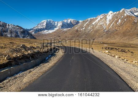Himalayan mountain road in North Sikkim India from Lachen to Gurudongmar lake surrounded with snow capped peaks and vast barren lands.
