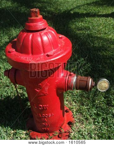 Fire Guard / Fire Hydrant