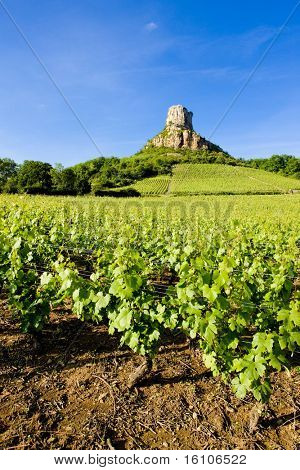 La Roche de Solutre with vineyards, Burgundy, France