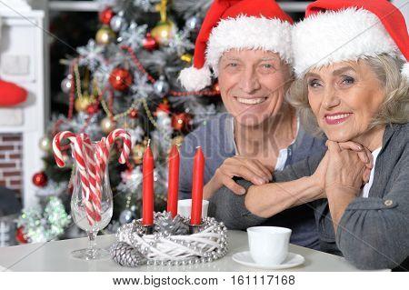 Portrait of senior couple celebrating Christmas at home