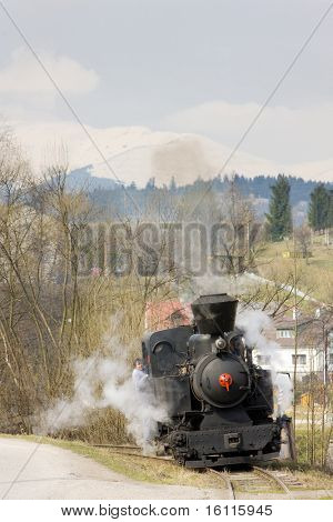 last day of service of CKD steam locomotive n. 5 (1.4.2008), Ciernohronska Railway, Slovakia