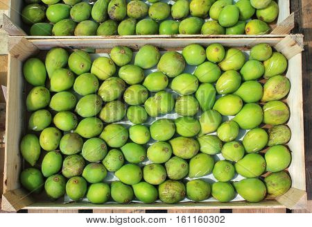 Green figs on the stall market in Portugal