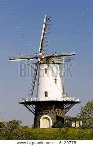 windmill, Veere, Zeeland, Netherlands