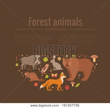 Vector cartoon flat style set of forest animals poster template. Zoo collection of fox, wolf, bear, moose, hedgehog, reindeer, owl, boar, raccoon, woodpecker, hare  All elements are isolated