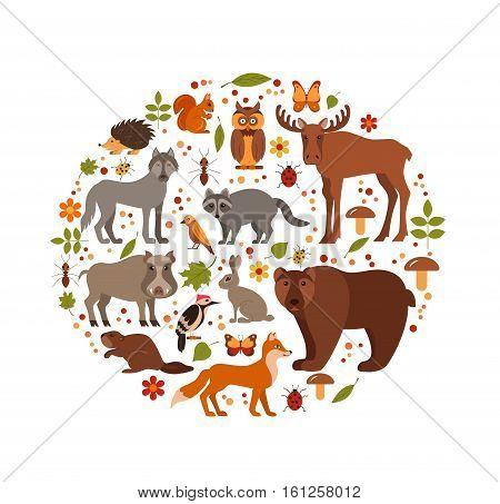 Vector cartoon flat style set of forest animals designed in circle. Zoo collection of fox, wolf, bear, moose, hedgehog, reindeer, owl, boar, raccoon, woodpecker, hare.  All elements are isolated