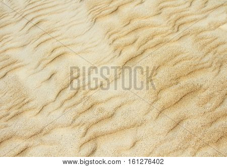 Yellow hot sand dune texture close up