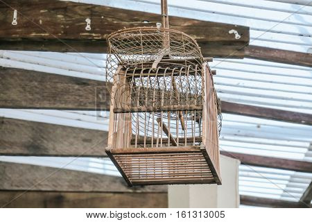 Bird cage. Wooden bird cage hanging on roof interior