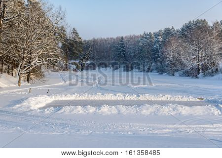 Tilted Fir Tree On The Shore Of A Frozen Pond